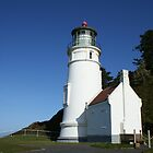Heceta Head Light House by Julie Beitzel