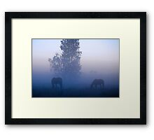 Broodmares, Blue mist Framed Print