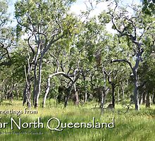 Far North Queensland Postcard by Heinz