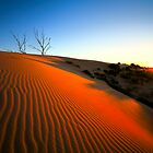 Red Dunes of the Cooper Basin by Paul Redding