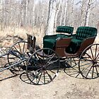 """Are You Ready Yet?* Four  Passenger  Pleasure  Buggy  With Velvet Seats by Leslie van de Ligt"