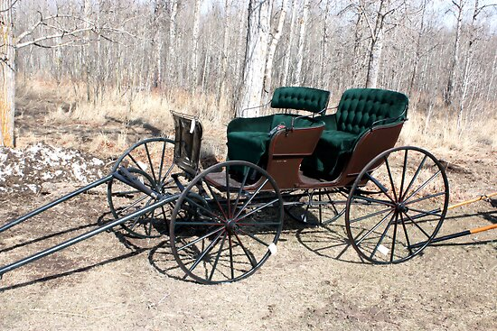"""""""Are You Ready Yet?* Four  Passenger  Pleasure  Buggy  With Velvet Seats by Leslie van de Ligt"""