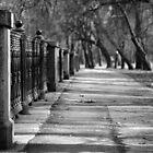 Walking Along Yauza by Andre Pozdnyakov
