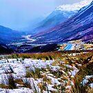 Winter by Roelene Carleton