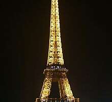 Eiffel at Night by DianaC