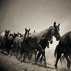 Walking Together. by Antonio Arcos aka fotonstudio