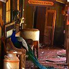 Grandma's Cabin by Devalyn Marshall