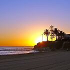 Collaroy Beach by David Smith