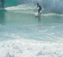 Surfing Burleigh Style #3  Sticker
