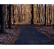Letchworth State Park XI Photographic Print