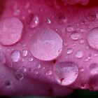 Droplets by DianaC