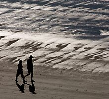 Silver sands by Alexander Meysztowicz-Howen