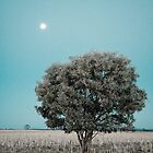 Moon tree by Alex Howen