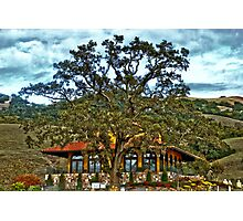 Red Ranch Photographic Print