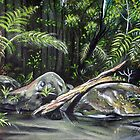 The Daintree Forest, Australia by  Linda Callaghan