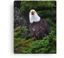 Eagle Screaming Canvas Print