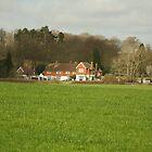 Rudgewick Homes by Tony Kemp