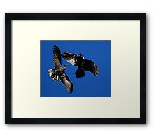 Raven Dance Framed Print