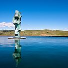 Statue in Napa Valley by Nickolay Stanev