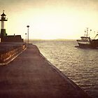 Leaving the safe harbour by wise