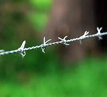 Barbed Wire by KatRB