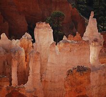 Hoodoo's Of Bryce Canyon by Barbara Burkhardt