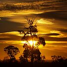 Golden Plains Sunset by Clive