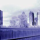 IR Bellevue 2 by Peter Nielsen