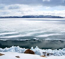 Defrosting Bear Lake by Barbara Burkhardt