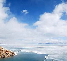 Bear Lake Utah  by Barbara Burkhardt