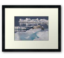 An Ice Rest Framed Print
