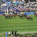 Boxing Day Races, Ellerslie by HandyAndy