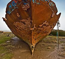 Rusty Wreck on Fleetwood Marsh by Steve  Liptrot