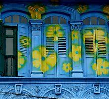 Blooming windows by Tamara Travers