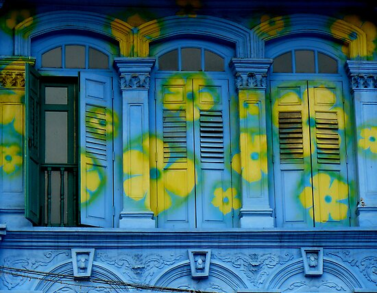 Blooming windows by Tamara Travers