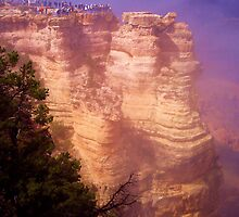 Human Lemmings, Grand Canyon South Rim by heidi-bee