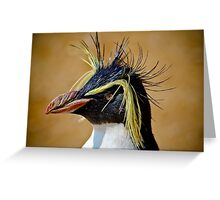 Rockhopper Penguin......... Greeting Card
