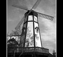 California Windmill by Ryan Houston
