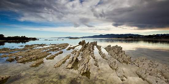 Sharks tooth graveyard by Ken Wright