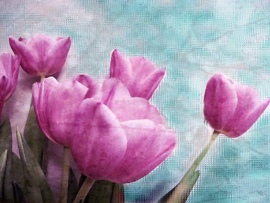 Tulips by ©Maria Medeiros