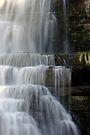 Cascades - Chittenango Falls - Vertical by Stephen Beattie
