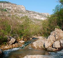 River in Northern Italian Nature Reserve by jojobob