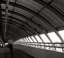 The Terminal by Danit Elgev