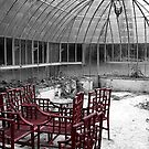 Greenhouse in red. Château de Boursault, France by rockko