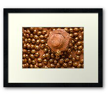 """""""If we ever get this nut off - anyone got a spanner?"""" Framed Print"""