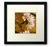blossom with textured paris wall Framed Print