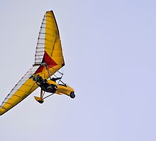 Cobra Aerotrike Microlight - Motorized Hang Glider by RatManDude
