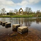Bolton Abbey, Wharfedale by Steve  Liptrot