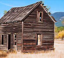 Montana Homestead by Patricia Montgomery