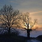 twilight lane by dinghysailor1